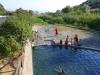 poolbathers