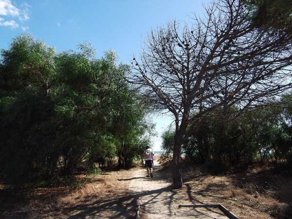 Paradiso nature preserve is on Sicily's south coast, not far from the Greek temples at Selinunte.