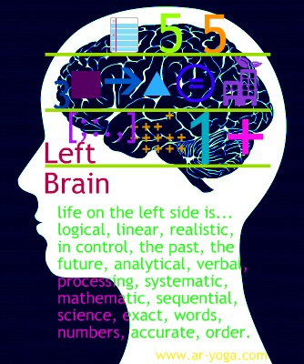 Exercising your left brain is definitely a good idea too.